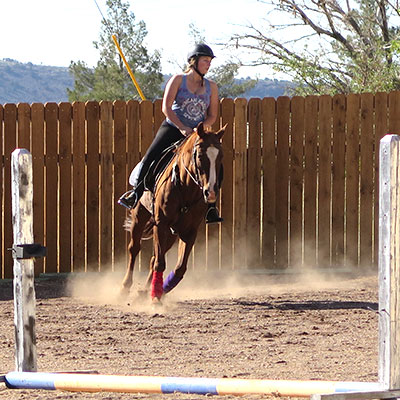 horseback Riding and Lessons: indoor riding arena, outdoor riding arena